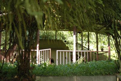 須坂町公園設計案