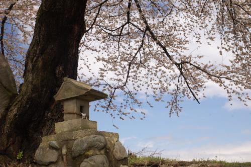 相ノ島の金毘羅さん